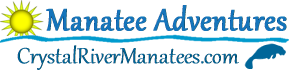 Crystal River Manatees – Swim With Manatees – Manatee Tours